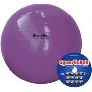 Bola Gynastic Ball com DVD de Exercícios 95 cm BL 01.95 - CARCI