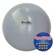 BOLA GYNASTIC BALL 65 CM BL.01.65 PRATA - CARCI