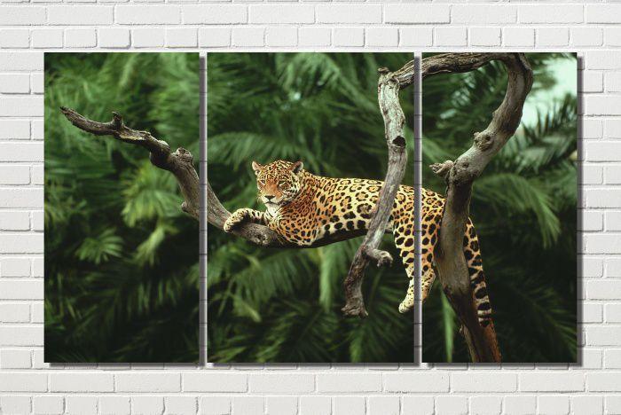quadro onça pintada deitada no galho seco na árvore 3 peças