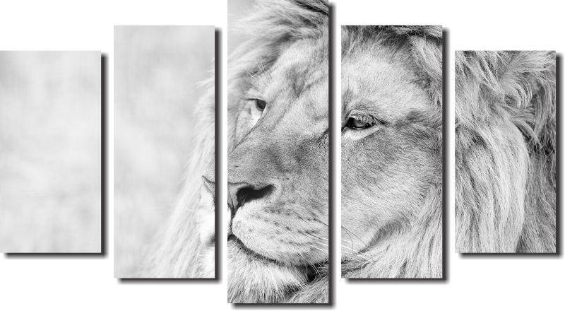Quadro Decorativo Leão Albino Varias Peças Para Salão