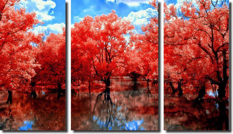 Quadro Decorativo Natureza Lago Com Arvores Laranjas Varias Peças
