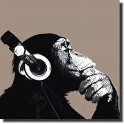 Quadro Decorativo Animal Macaco Com Fone de ouvido