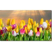 Quadro Decorativo Flores Tulipa Coloridas 1 peça