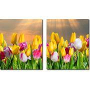 Quadro Decorativo Flores Tulipa Coloridas  2 peças