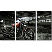 quadros decorativos paisagens motos e trens para quartos e salas 3 peças