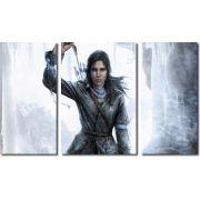 quadros decorativos jogo rise of the tomb raider para quartos e salas 3 peças