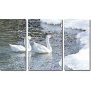Quadro decorativo lago com cisne para quartos e salas 3 peças