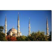 Quadro Decorativo Paisagem Mesquita Azul 1 Peça