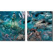 Quadro Decorativo Filme Aquamen Para Quartos E Salas 2 Peças