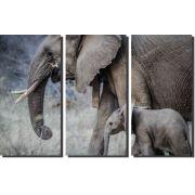 Quadro elefante com filhote monocromatico kit 3 peças