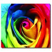 Quadro Rosa Colorida