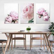 Kit 3 Quadros Decorativos Flores Rosa Rose