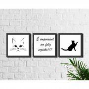Kit 3 Quadros Decorativos Gatos Preto e Branco