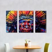 Kit 3 Quadros Decorativos Índio Brasileiro Abstrato Colorido