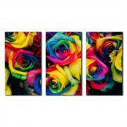 Kit 3 Quadros Decorativos Rosas Colorida