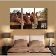 Kit Quadros Decorativos Cavalos Marrom