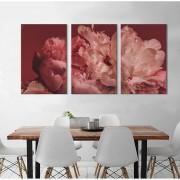 Kit Quadros Decorativos Flores Rose