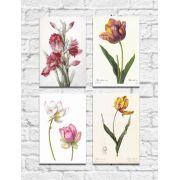 Kit Quadros Decorativos Flores Vintage 4 peças M4