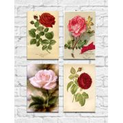 Kit Quadros Decorativos Flores Vintage 4 peças M5