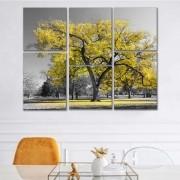 Kit Quadros Decorativos Ipê-Amarelo