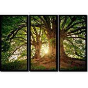 Quadro Decorativo Árvore Por do Sol 3 peças