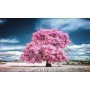 Quadro Decorativo Arvore Rosa com ceu azul 1 peca