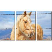 Quadro Decorativo Cavalo Amarelo 3 Peças