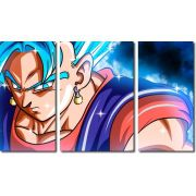 Quadro Decorativo Dragon Ball Goku Super Sayajin 3 Peça M23