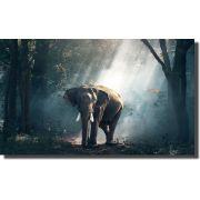 Quadro Decorativo Elefante Africano para Sala peça