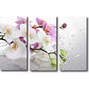 Quadro Decorativo Galho De Orquídea 3 Peças Para Sala