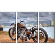 Quadro Decorativo Moto Harley Davidson 3 Peças