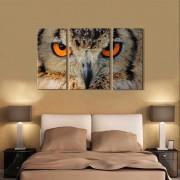 Quadro decorativo paisagem coruja para quartos e salas 3 peças
