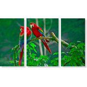 Quadro Decorativo Paisagem Pássaro Arara 3 peças