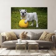Quadro decorativo para quarto e sala cachorrinho branco 1 peça