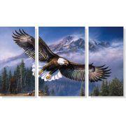 Quadro Decorativo Pássaro Águia 3 peças