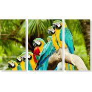 Quadro Decorativo Pássaro Arara 3 Peças