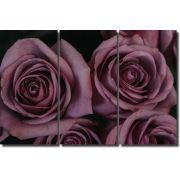 Quadro Decorativo Rosa para Sala 3 peças