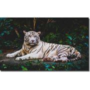 Quadro Decorativo Tigre Branco 1 peça