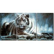 Quadro Decorativo Tigre Moderno Maravilhoso 3 peças
