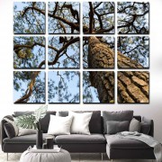 Quadros Decorativos Galho de árvore 12 peças Gigante