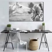 Quadros Decorativos India Com Cavalo