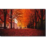 Quadros Decorativos Paisagem Outono 1 peça