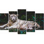 Quadros Decorativos Tigre Branco 5 peças