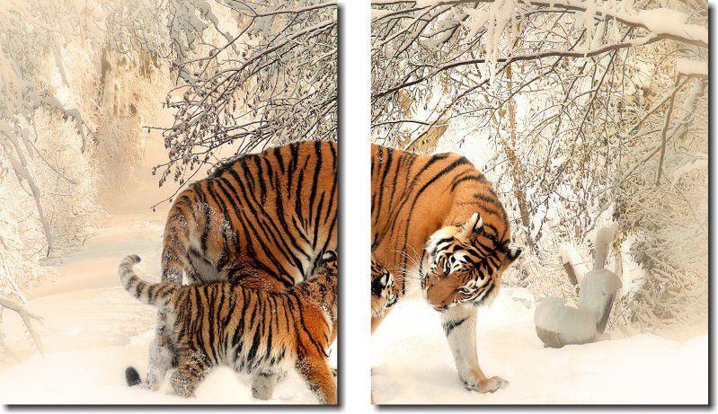 Quadro decorativo tigre na neve para quartos e salas 2 peças