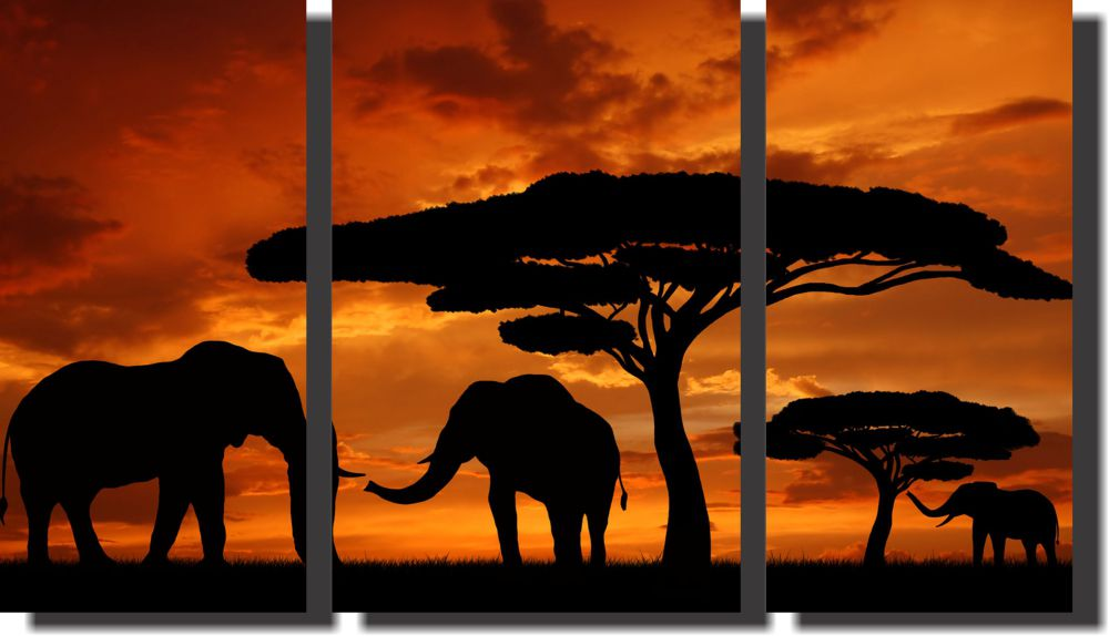Quadro Decorativo Elefante Savana Africa 3 Peças