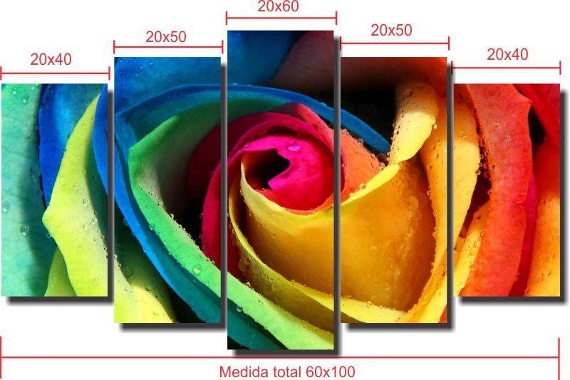Quadro Decorativo Rosa Colorida  5 peças Para Sala e Quarto