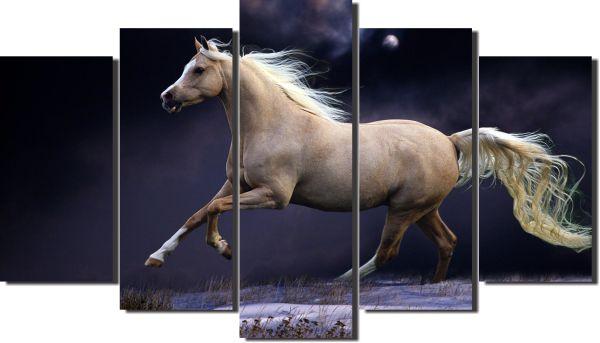 quadro cavalo na noite  para decoração kit 5 peças