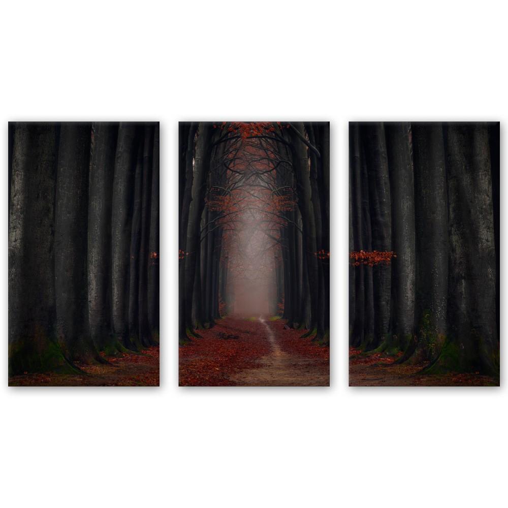 Kit Quadros Decorativos caminho na Floresta