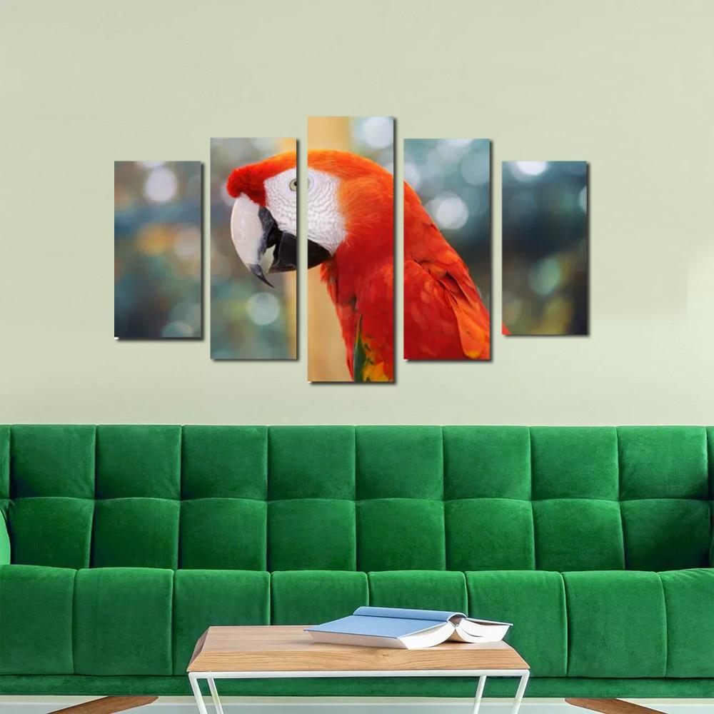 Quadro Arara Parrot Para Decorar Sua Sala