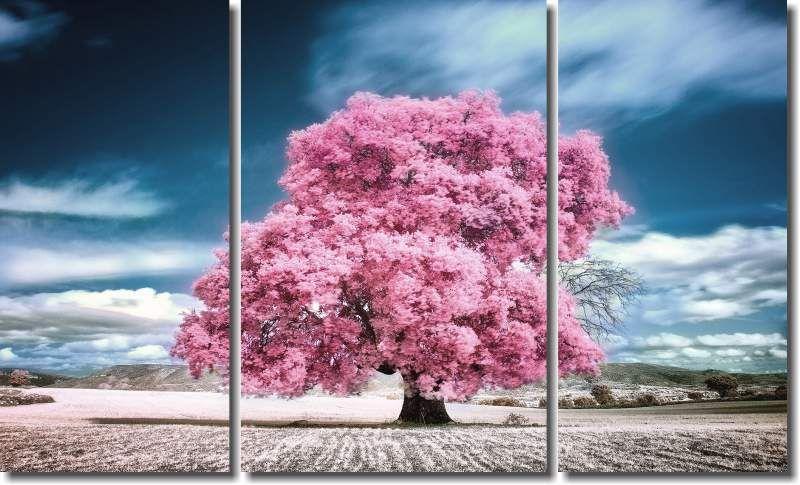Quadro Decorativo Arvore Rosa com ceu azul 3 pecas